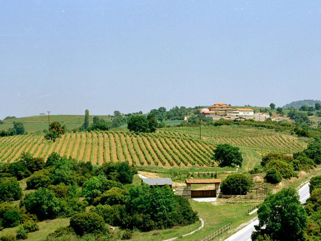 Domaine Papatzimopoulos